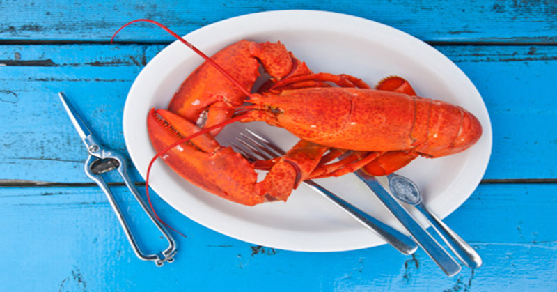 https: img.okezone.com content 2018 01 12 298 1844009 swiss-keluarkan-larangan-merebus-lobster-hidup-hidup-qjRVaXj49i.jpg