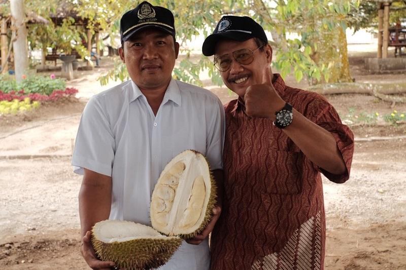 https: img.okezone.com content 2018 01 22 298 1848642 mencicipi-durian-slumbung-dan-semoyo-buah-primadona-kediri-qJIyb4n8IX.jpg