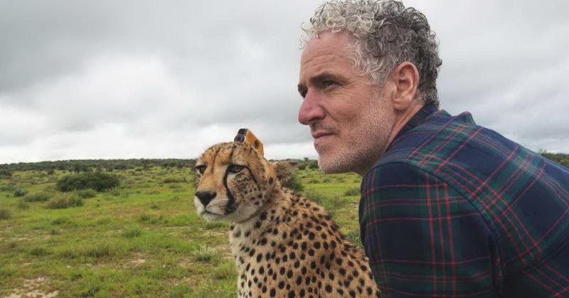 https: img.okezone.com content 2018 02 02 56 1853955 unik-ini-jadinya-jika-cheetah-jadi-kameramen-n4zvvVNDwD.jpg
