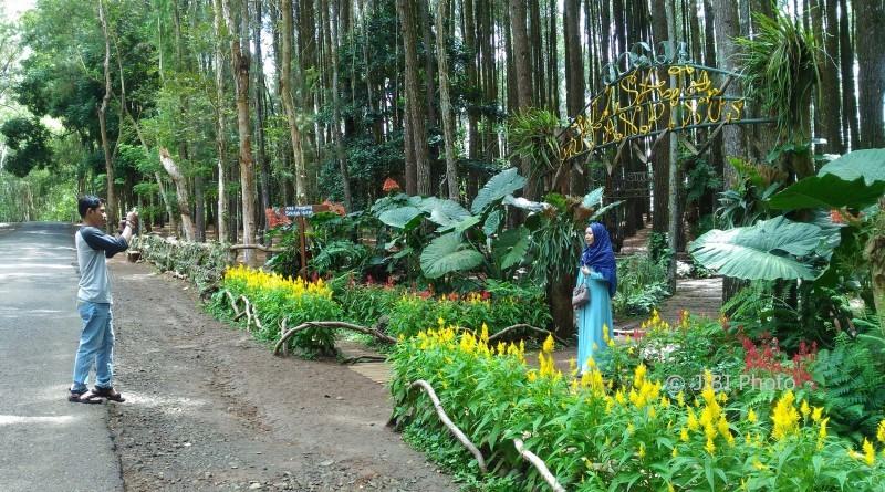 https: img.okezone.com content 2018 02 07 406 1855853 hati-hati-berswafoto-di-lokasi-wisata-mangunan-bantul-rawan-bencana-lHW20fm05O.jpg