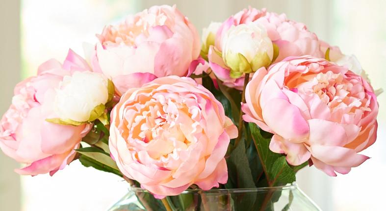 https: img.okezone.com content 2018 02 13 194 1859041 bunga-peony-khas-paris-bisa-dijadikan-parfum-rambut-UaNpRRoME2.jpg