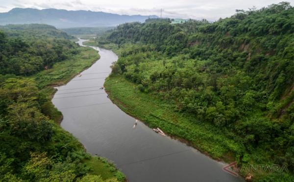 Image result for sungai, okezone