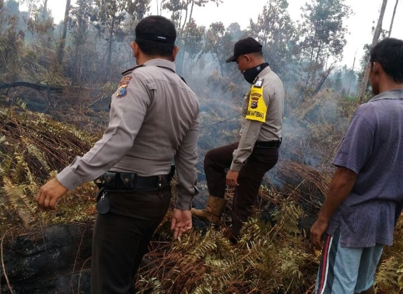 https: img.okezone.com content 2018 03 03 340 1867462 kebakaran-hutan-dan-lahan-di-riau-meluas-menjadi-849-hektare-9iSgSHfqWm.jpg