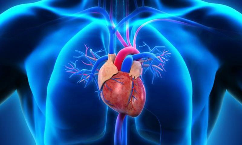 https: img.okezone.com content 2018 03 09 481 1870270 mengenal-penyakit-kebocoran-katup-jantung-yang-dialami-bj-habibie-boPvRWyXiF.JPG