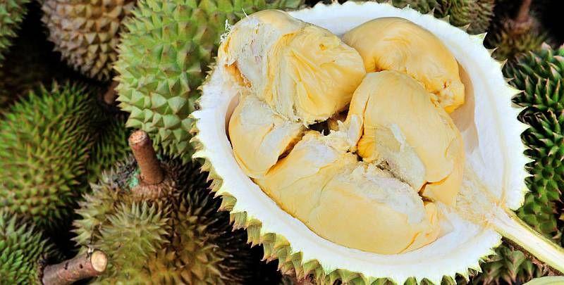 https: img.okezone.com content 2018 04 02 481 1880792 di-balik-rasanya-yang-lezat-yuk-kenali-6-fakta-kesehatan-tentang-durian-ZYazB4TF19.jpg