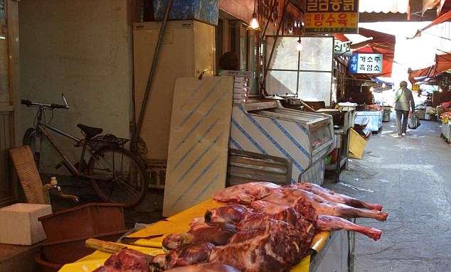 https: img.okezone.com content 2018 06 22 406 1912661 korea-selatan-larang-konsumsi-daging-anjing-eykftOJqlA.jpg