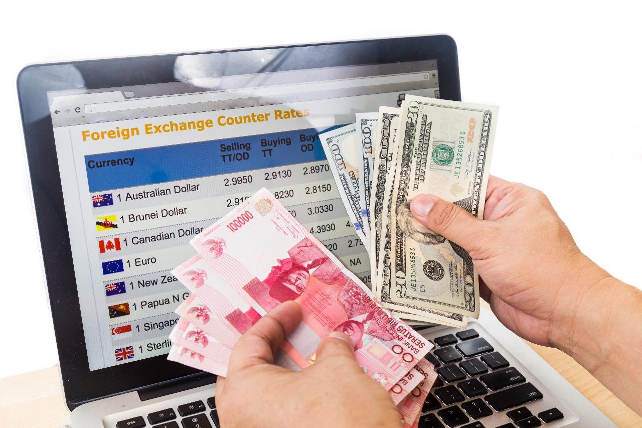Cara Berinvestasi dalam Forex Untuk Mendapatkan Profit Bulanan Yang Lancar