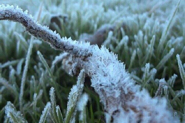 Penjelasan Bmkg Terkait Fenomena Salju Di Pegunungan Dieng