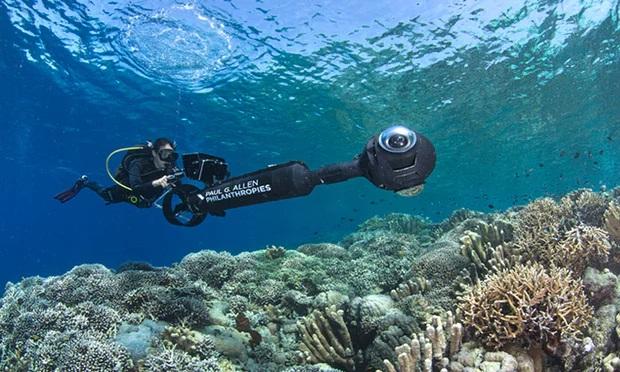 https: img.okezone.com content 2018 08 14 56 1936513 terumbu-karang-perairan-sulawesi-tahan-pemanasan-global-s5wAZt9kIv.jpg