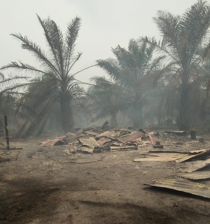 https: img.okezone.com content 2018 08 16 340 1937447 kebakaran-hutan-di-riau-menjalar-ke-permukiman-20-rumah-warga-hangus-iroSxKIRcL.jpg