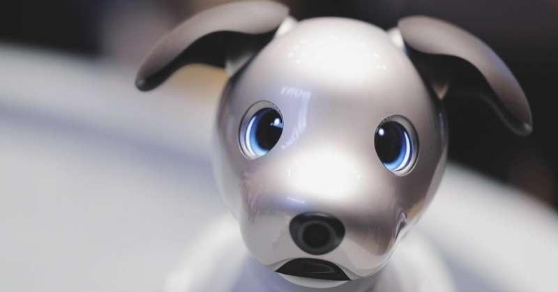 https: img.okezone.com content 2018 09 25 56 1955521 robot-anjing-berteknologi-ai-bisa-patuhi-perintah-pemilik-lxb0A6eHY4.jpg