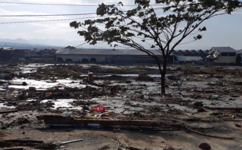 https: img.okezone.com content 2018 10 03 65 1959228 pasca-gempa-tsunami-palu-mahasiswa-untad-bisa-kuliah-sementara-di-38-ptn-RfDtcu2msF.jpg