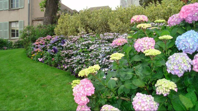Bosan Dengan Hiasan Rumput Yuk Percantik Taman Kamu Dengan Tanaman Bunga Okezone Lifestyle