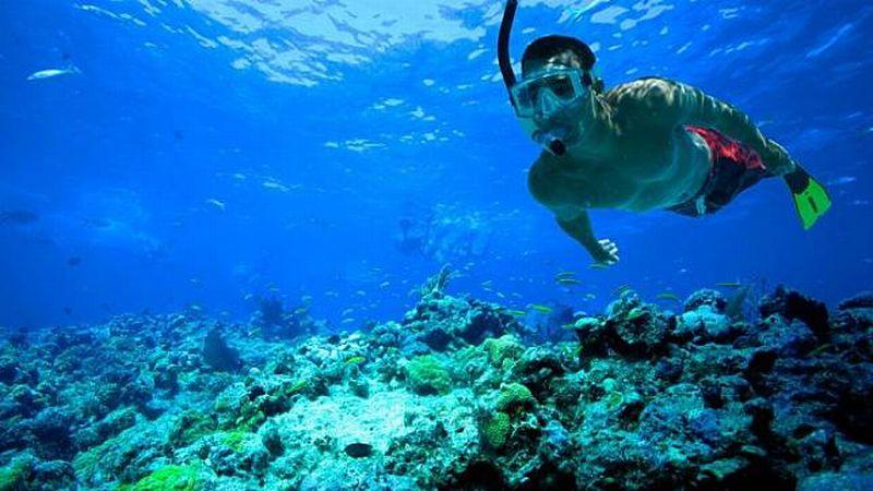 https: img.okezone.com content 2018 10 12 406 1963294 festival-pesona-raja-ampat-tawarkan-wisata-snorkeling-terbaik-dunia-QSsRqDNeWH.jpg