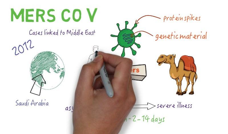 Mengenal Lebih Jauh Mers CoV, Penyakit Berbahaya yang Mengancam Jamaah Haji & Umroh
