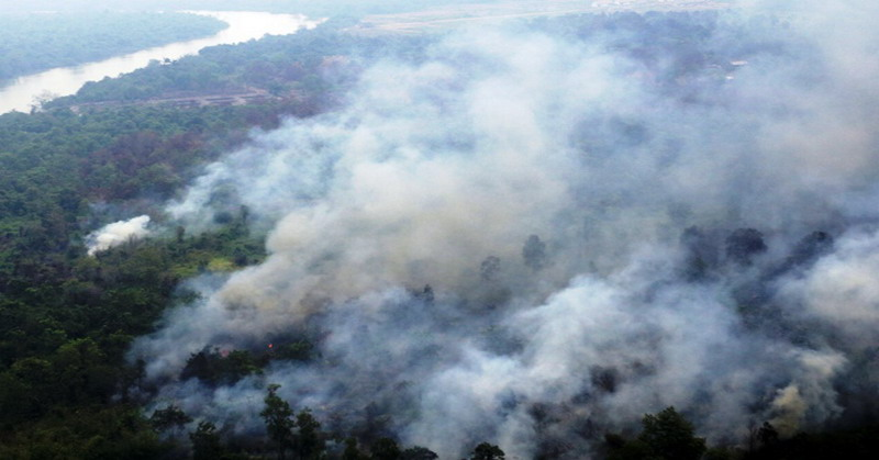 https: img.okezone.com content 2018 11 12 340 1976514 potensi-kebakaran-hutan-2019-meningkat-karena-dampak-el-nino-woCyOGeJe0.jpg