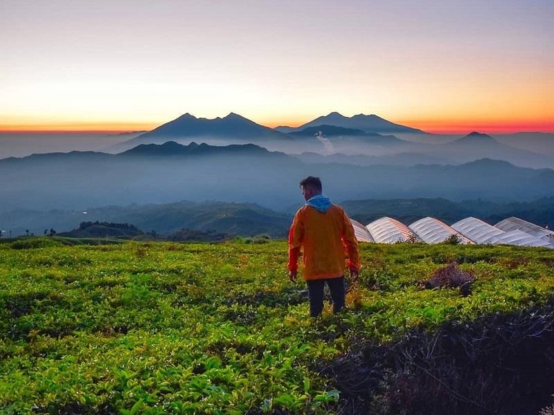 https: img.okezone.com content 2018 11 16 406 1978947 destinasi-berburu-panorama-kabut-yang-mempesona-mulai-dari-gunung-halimun-hingga-bukit-kingkong-bromo-1RpTOtsRQq.jpg