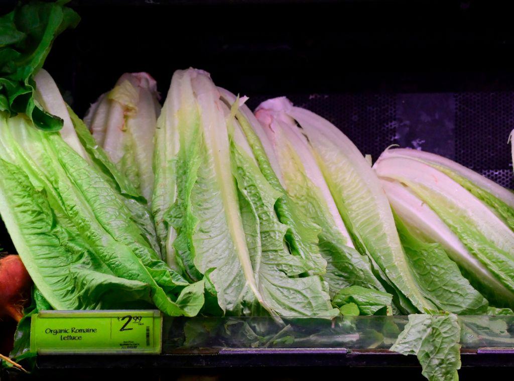 https: img.okezone.com content 2018 11 23 481 1981590 miliki-kandungan-bakteri-e-coli-as-imbau-semua-masyarakat-dunia-membuang-selada-romaine-3yIo8OSDhE.jpg