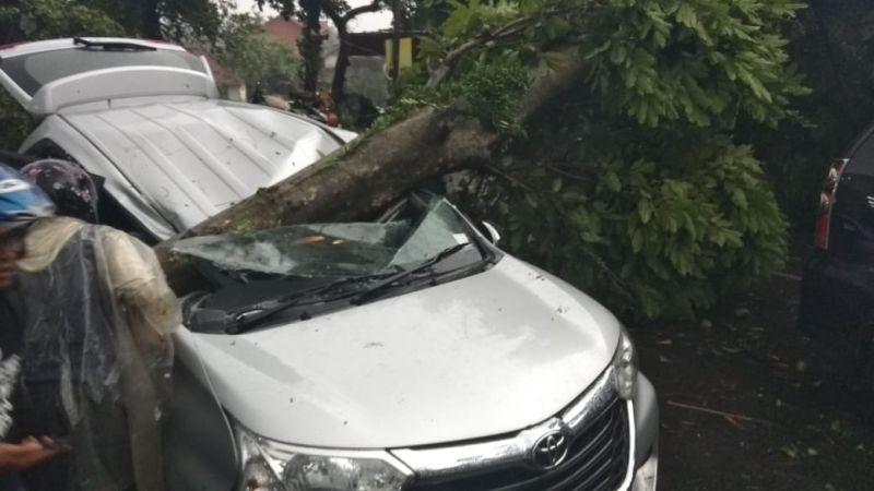 Image Result For Puting Beliung Bogor