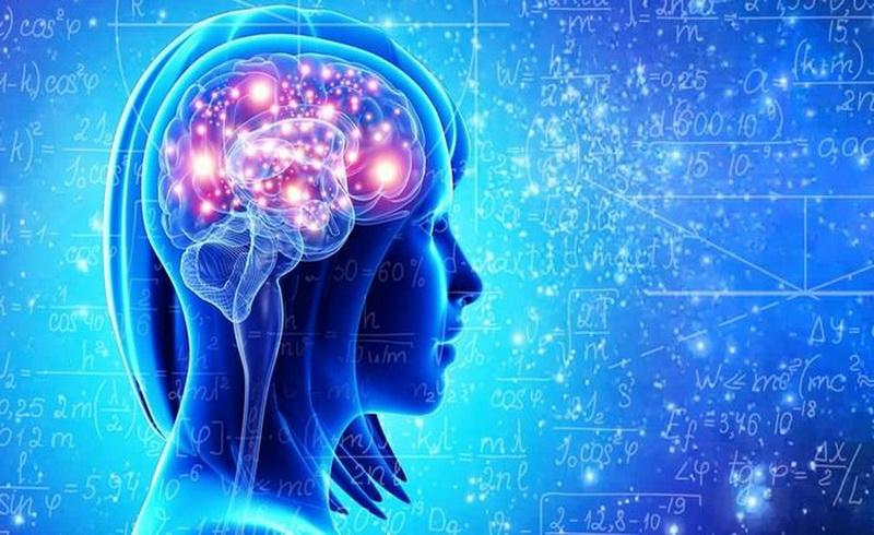 https: img.okezone.com content 2018 12 14 196 1991175 6-reaksi-aneh-di-otak-saat-jatuh-cinta-efeknya-bisa-bikin-kecanduan-lho-OvjhO2SBId.jpg