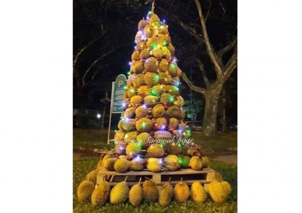 https: img.okezone.com content 2018 12 26 298 1996323 pohon-natal-durian-hebohkan-malaysia-tingginya-sampai-2-meter-dltZKwN5nY.jpg