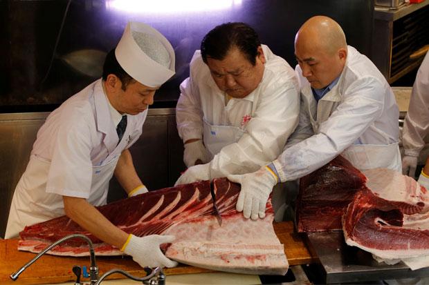 Fakta Fakta Soal Ikan Tuna Rp44 Miliar Yang Perlu Anda Tahu Okezone Economy