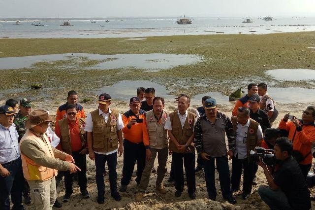 https: img.okezone.com content 2019 01 12 337 2003626 bnpb-hutan-pantai-dapat-kurangi-risiko-bahaya-tsunami-y67h8ykzwg.jpg