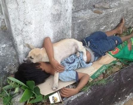 https: img.okezone.com content 2019 01 15 609 2004980 viral-anak-jalanan-tidur-bareng-anjing-kecilnya-di-trotoar-KbISh3IXa8.JPG