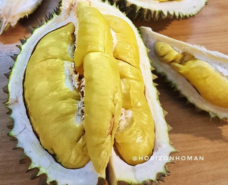 https: img.okezone.com content 2019 01 16 298 2005406 3-durian-terenak-dan-termahal-di-dunia-nomor-2-dari-indonesia-Xbvu6OlPLh.jpg