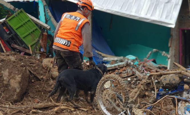 https: img.okezone.com content 2019 01 29 609 2010938 anjing-pelacak-temukan-3-jasad-korban-longsor-di-gowa-nh2H3Jj1Ki.JPG