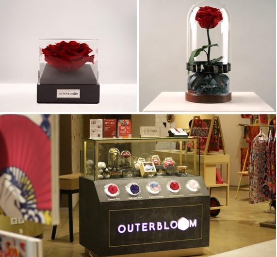 https: img.okezone.com content 2019 02 04 12 2013670 valentine-day-outerbloom-luncurkan-mawar-abadi-di-central-grand-indonesia-jqEmYZuz7p.jpg