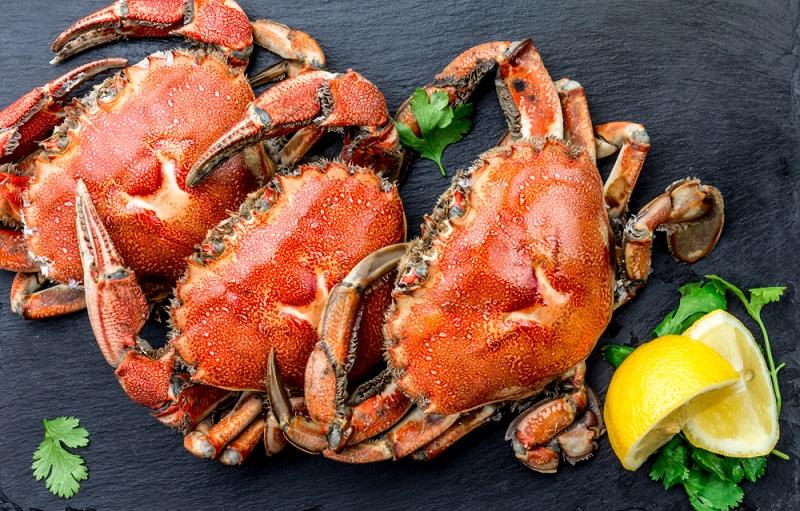 https: img.okezone.com content 2019 02 23 481 2021869 diyakini-berkolesterol-tinggi-ternyata-ini-manfaat-makan-daging-kepiting-Qw2v5SQu6q.jpg