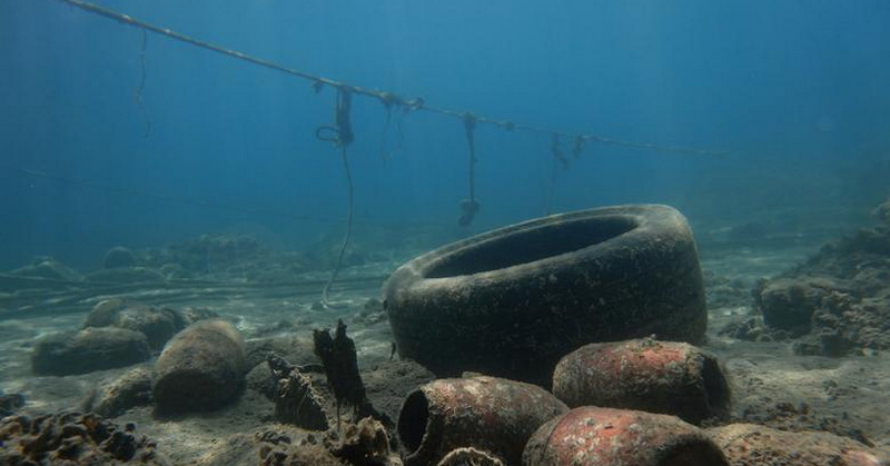 https: img.okezone.com content 2019 03 01 56 2024696 plastik-ditemukan-dalam-perut-hewan-di-palung-laut-terdalam-1TcuB4FqGz.jpg