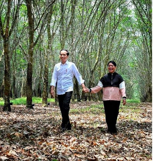https: img.okezone.com content 2019 03 10 196 2028000 foto-bergandengan-tangan-jokowi-iriana-di-hutan-karet-banyuasin-beredar-bikin-iri-deh-fWS1rOGBNP.png