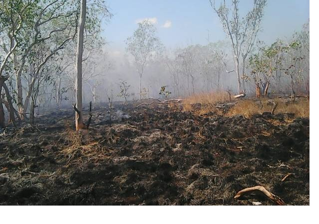 https: img.okezone.com content 2019 03 10 340 2028205 selama-2-pekan-prajurit-kostrad-berjibaku-padamkan-kebakaran-hutan-riau-S1Urqu6d8F.jpg