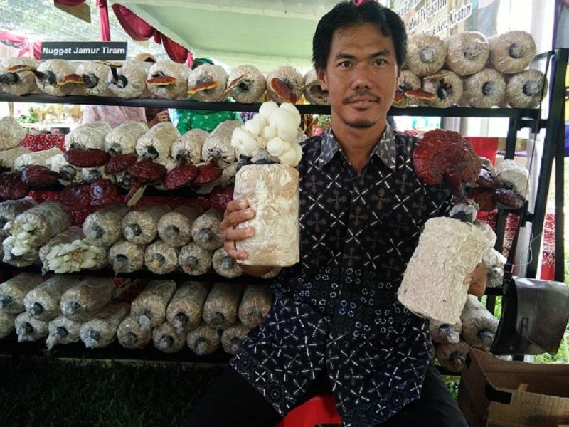 https: img.okezone.com content 2019 03 13 481 2029429 tak-disangka-jamur-ini-bisa-jadi-obat-ampuh-untuk-diabetes-IkZrG71qNT.jpg