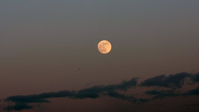 https: img.okezone.com content 2019 04 18 56 2045291 fenomena-bulan-purnama-pink-diprediksi-terjadi-pada-19-april-YpB6cXqr8l.jpg