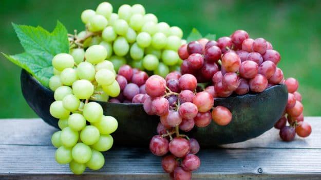 https: img.okezone.com content 2019 04 20 481 2045960 mengintip-manfaat-kesehatan-anggur-salah-satu-komoditi-andalan-negeri-kangguru-FiZBNhMzM4.jpg