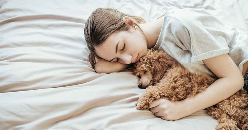 https: img.okezone.com content 2019 04 22 196 2046633 tidur-bareng-anjing-bisa-cegah-mimpi-buruk-crzhmzMdC7.jpg