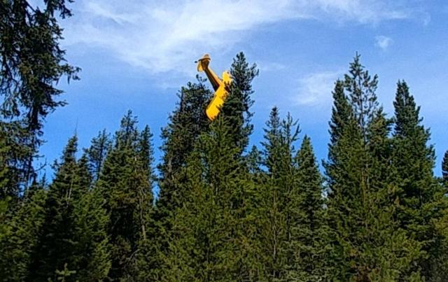 https: img.okezone.com content 2019 04 26 18 2048520 pesawat-tersangkut-di-pohon-gegara-masalah-mesin-pilot-ini-berhasil-selamat-pK9fNKvgyG.jpg