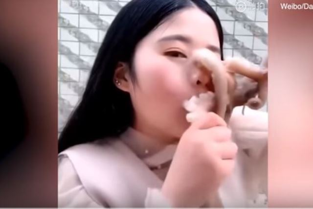 https: img.okezone.com content 2019 05 10 18 2054111 niat-pamer-makan-wajah-perempuan-ini-disedot-gurita-MyoeP3danM.JPG