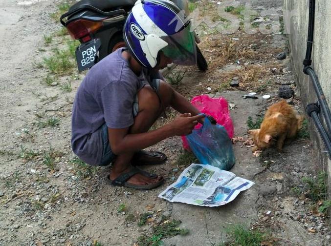 https: img.okezone.com content 2019 05 10 196 2053821 kisah-juru-parkir-habiskan-setengah-gaji-untuk-beri-makan-kucing-dan-anjing-liar-ULPnxE8nrd.png