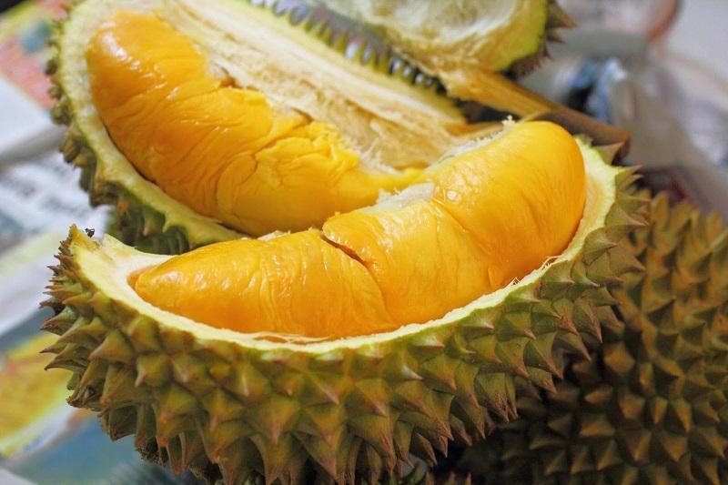 harga durian yang mahal dipilih karena bentuk, berat dan kematangannya sempurna.