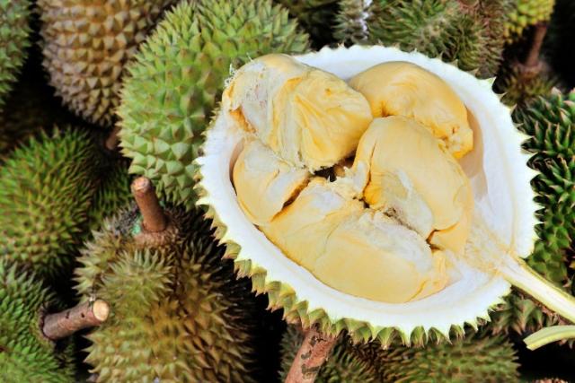Durian kanyao itu dibeli oleh pengusaha lokal kaya raya.