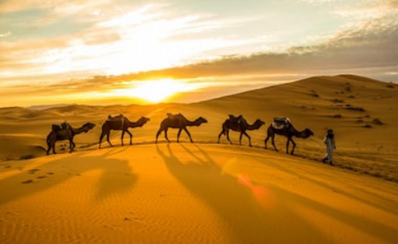 https: img.okezone.com content 2019 05 24 320 2059947 jejak-bisnis-nabi-muhammad-saw-menghadapi-konsumen-batal-membeli-TWAwfWH5Pl.jpg
