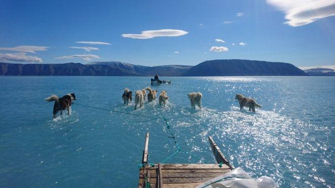 https: img.okezone.com content 2019 06 19 18 2068146 lautan-es-di-greenland-meleleh-peneliti-peringatkan-dampaknya-ke-dunia-uHwCKzPWJc.jpg