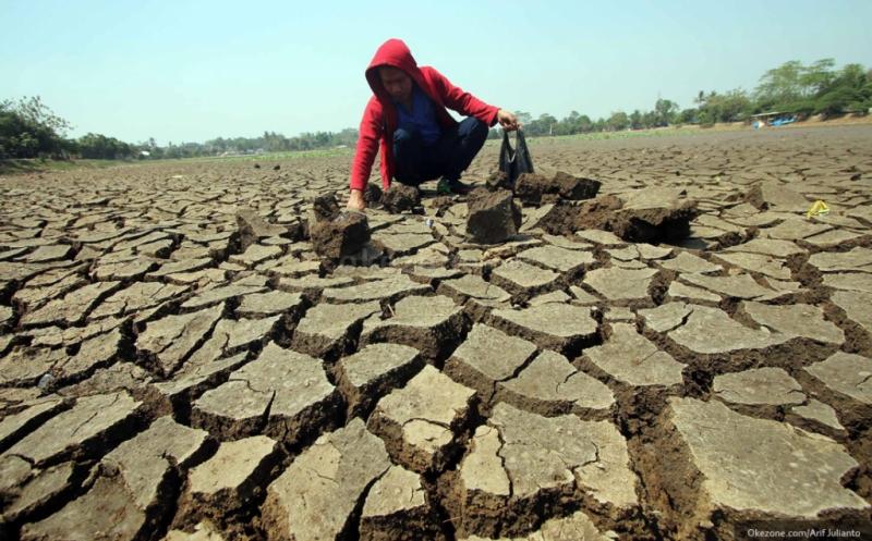 https: img.okezone.com content 2019 06 25 337 2070753 35-persen-wilayah-indonesia-masuki-musim-kemarau-waspada-bencana-kekeringan-tPxElgmHHA.jpg