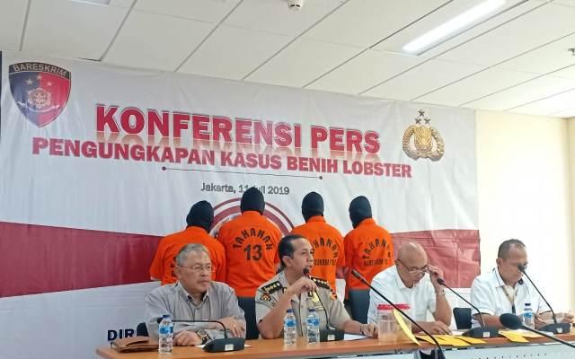 https: img.okezone.com content 2019 07 11 337 2077546 polri-gagalkan-penyelundupan-benih-lobster-ke-singapura-3VWts3ZPfh.jpg