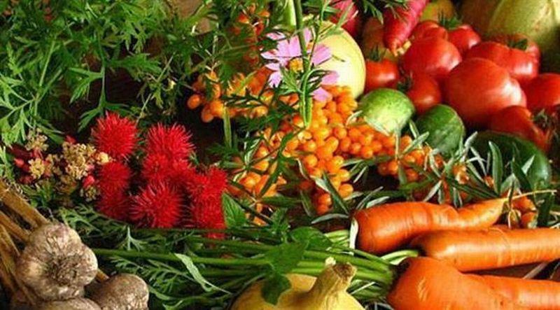 https: img.okezone.com content 2019 07 13 481 2078417 dari-jamur-hingga-beri-sayur-dan-buah-ini-ampuh-cegah-kanker-vAVg3rbANH.jpg