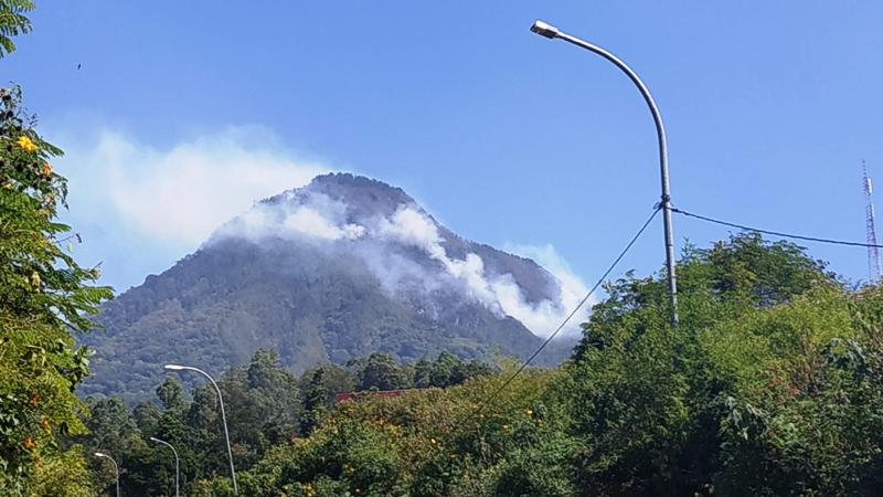 https: img.okezone.com content 2019 07 22 519 2081914 kebakaran-di-hutan-gunung-panderman-meluas-bpbd-tetapkan-tanggap-darurat-bencana-n0xQZWBPUb.jpg